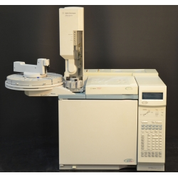 Hp/Agilent 6890 GC with Dual Fid Detectors
